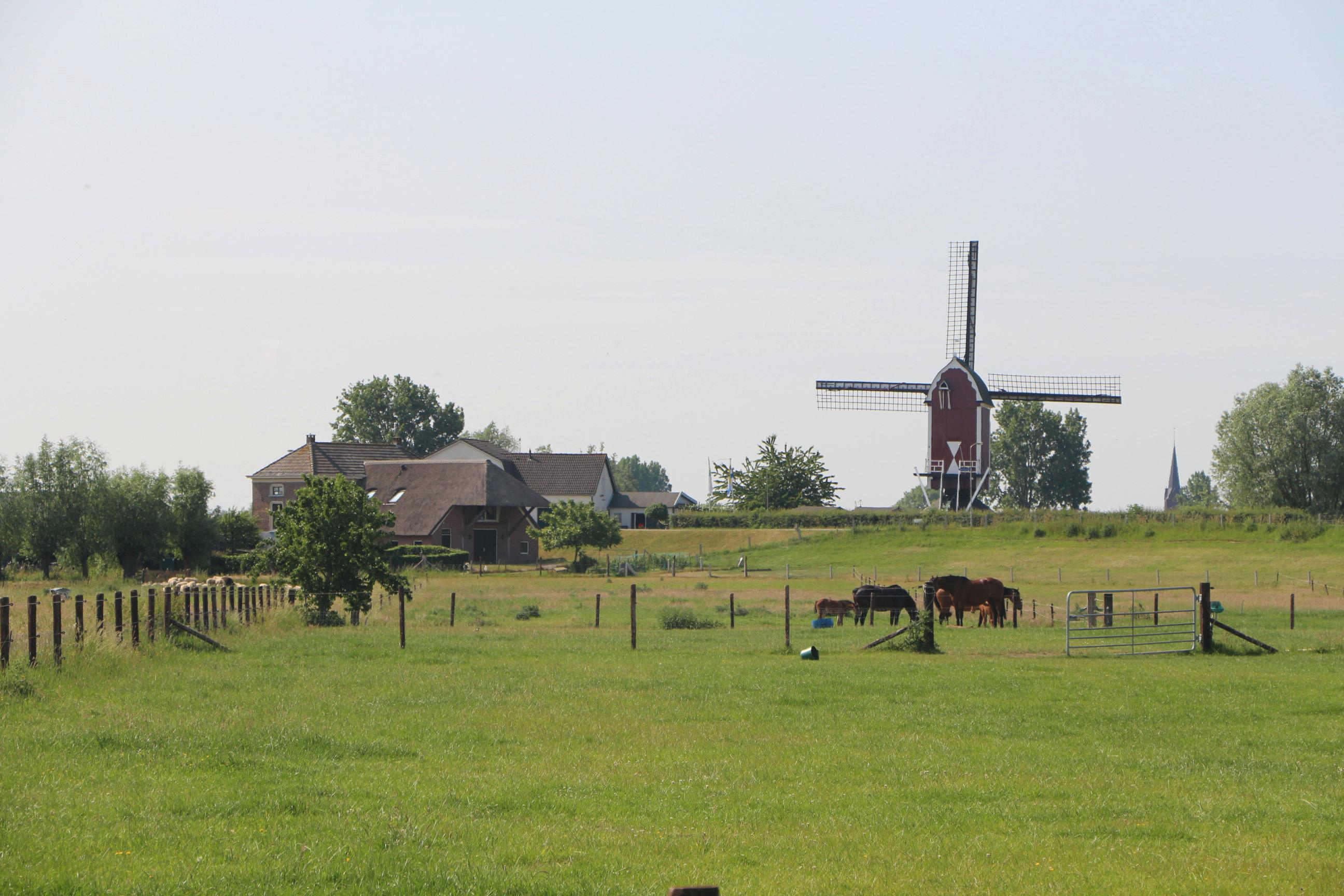 Omgevingsvisie West Maas en Waal